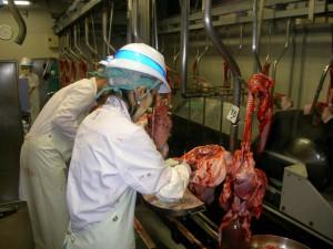 【愛媛県】食肉5