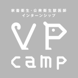 VPcamp
