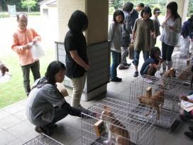 動物愛護センター・譲渡会での現場体験